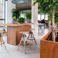 finierēts galds sapulču telpām birojā, finierēts galds, mēbeles sapulču telpām, mēbeles birojam, konferenču galds, galds